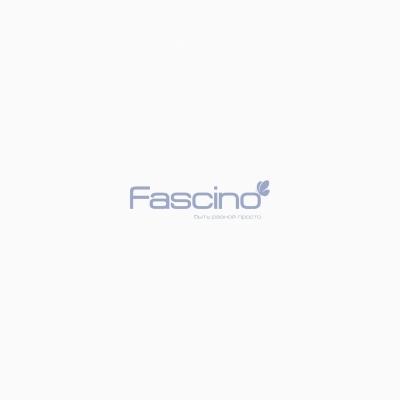 Fascino-logo