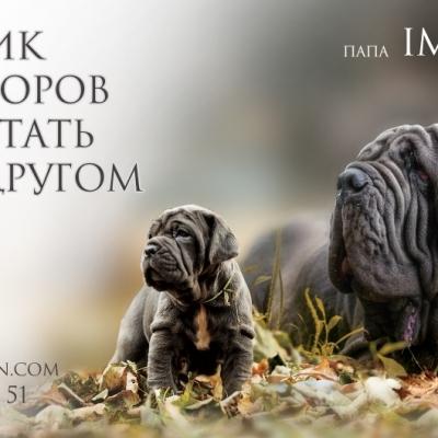 nabrosok-002